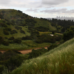 CA's Rainy Season Is Over. Here's How Much Our Cup Overfloweth