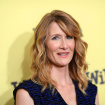 Laura Dern Could Be The Next Academy President, If We're Very Lucky
