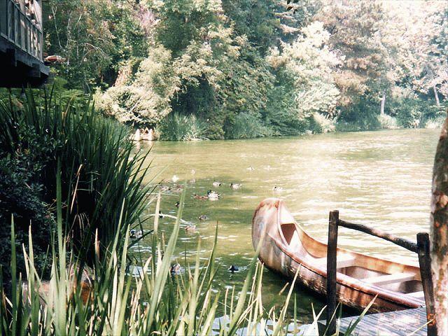 canoeandwater2.jpg