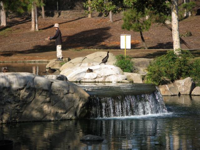 angler and duck