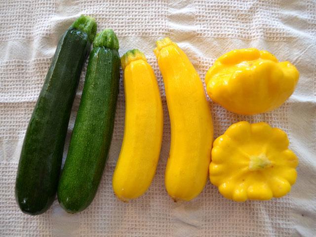 hp_zucchini.jpg