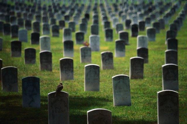 tombstones, graves, cemeteries.jpg