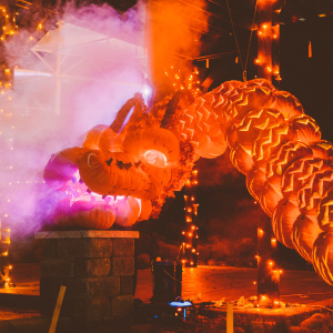 Pumpkin Nights Unleashes 3,000 Hand-Carved Creations On Southern California