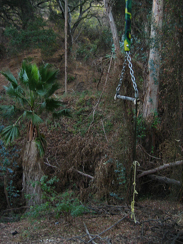 Tarzan-ish Swing