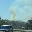 Small Brush Fire Burning Near Dodger Stadium In Elysian Park