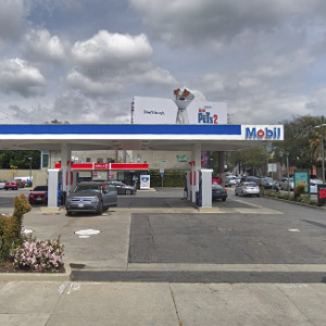 The Curious History Of LA's Gas Station Topiary Art