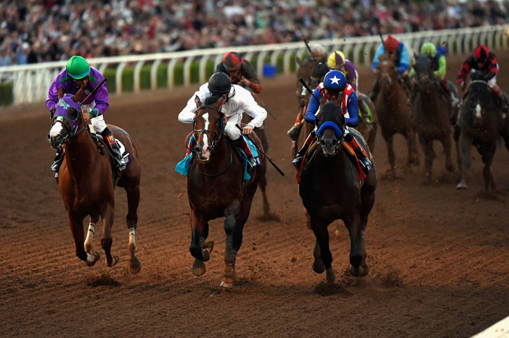 Santa Anita Park Averages 50 Horse Deaths A Year. This Year Is Nothing New