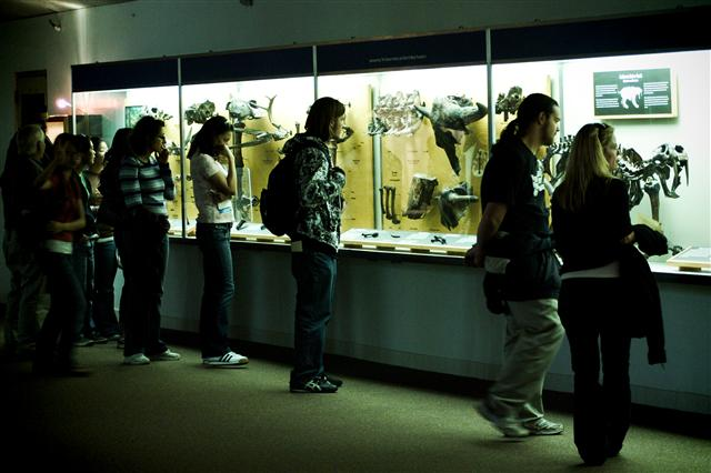 A Crowd Examines the Fossil Display