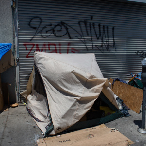 What Is The Federal Government Doing To End Homelessness In LA?