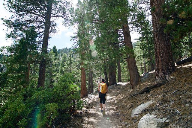 Hiking the Mount Waterman Loop