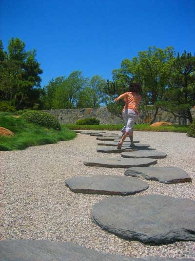 Jumping rocks in the Dry Garden