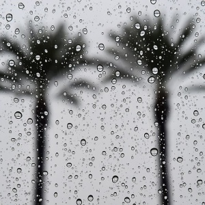 LA's Warm November Is Going From Record Highs To Rain