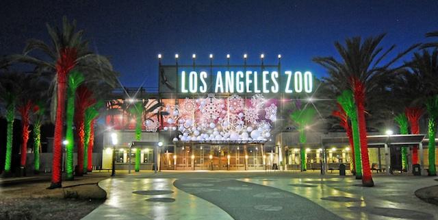 Nice La Zoo Lights Good Looking