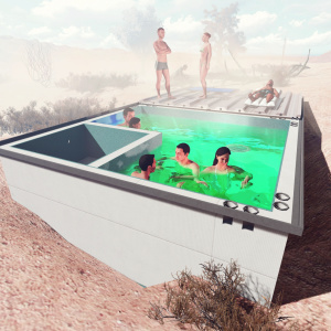 Bringing Back The Little Pool Hidden In The Middle Of The Mojave Desert