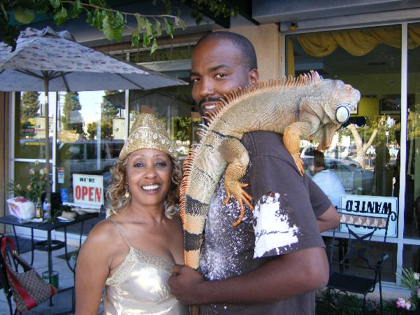 iguana%20with%20golden.jpg