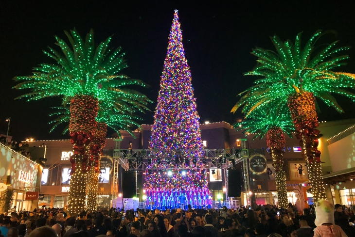 Getting A 110 Foot Tall Christmas Tree To The Citadel Outlet Is Even