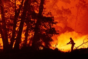Under Orange Skies And Falling Ash, Backpackers Waited For Rescue From Creek Fire