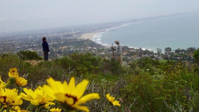 los-liones-trail-hike.jpg