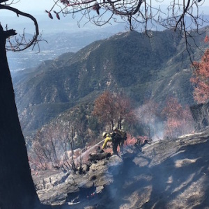 Fire Near Mt. Wilson Observatory Now At 50 Acres and 25% Containment