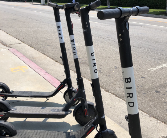 Why Bird And Lime Turned Off Their Scooters In Santa Monica And Urged Riders To Rally