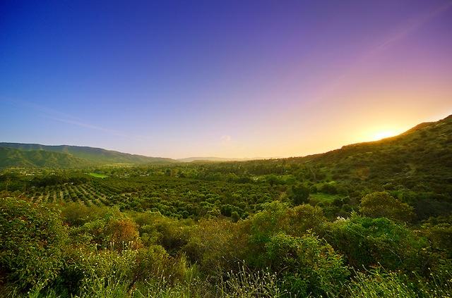 ojai-valley.jpg