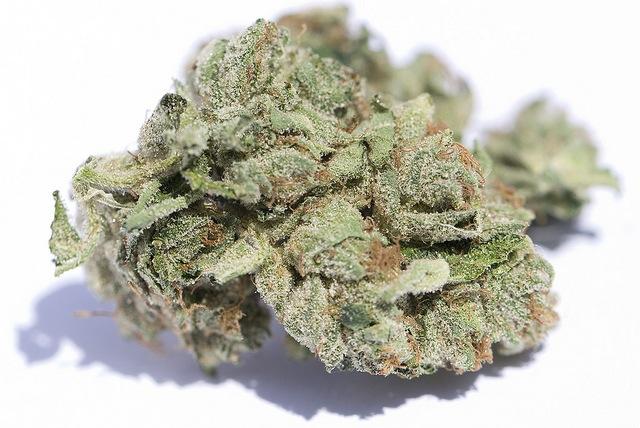 og_kush_medical_marijuana.jpg