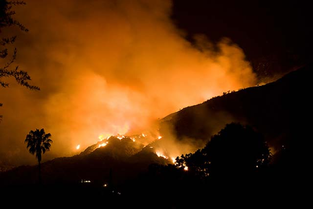 A wildfire in Santa Anita Canyon near Arcadia has burned close to 300 acres and has forced evacuations from nearby homes