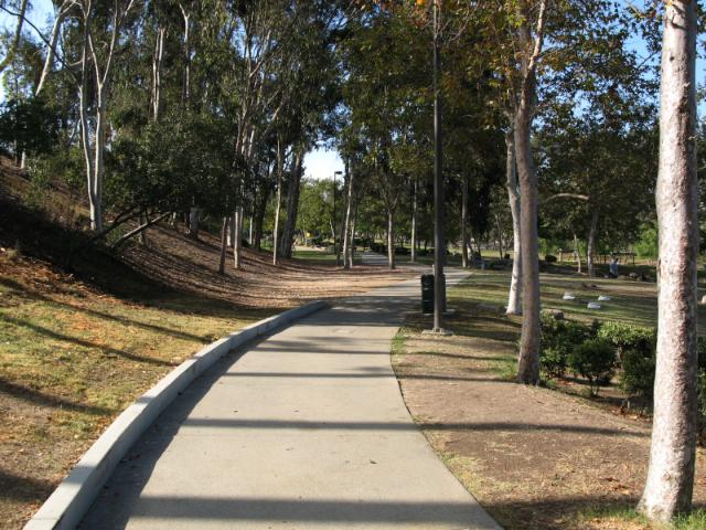 a lovely, tree-lined path