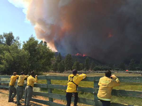 Why Would Someone Deliberately Start A Wildfire?