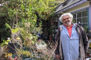 Endangered West Hollywood Rare Plant Nursery May Survive