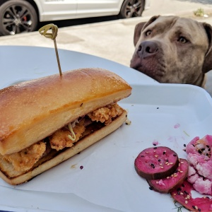 The Best LA Places To Eat Brunch With Your Dog