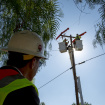 SoCal Edison Is Spending Millions To Make Sure Its Power Poles Are Safe From Birthday Balloons