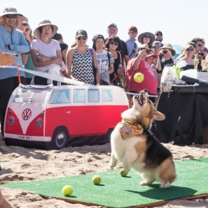 27 Of The Coolest Events Happening In Southern California This Weekend