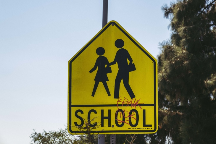COVID-19 Cases Leveling Off, But Will Schools Reopen Soon? - LAist
