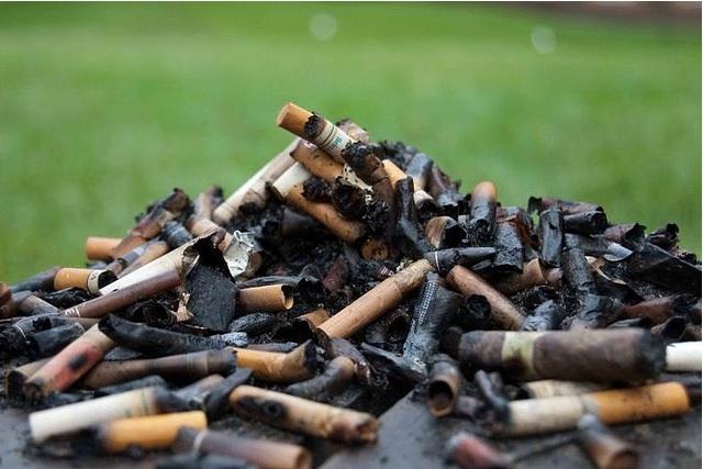 gross-ashtray.jpg