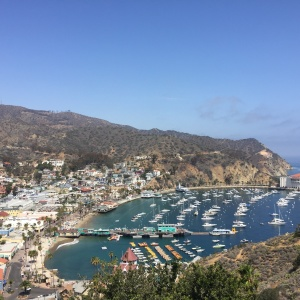 Catalina Island Has Gotten So Much Rain That It's Dropping Its Drought Measures