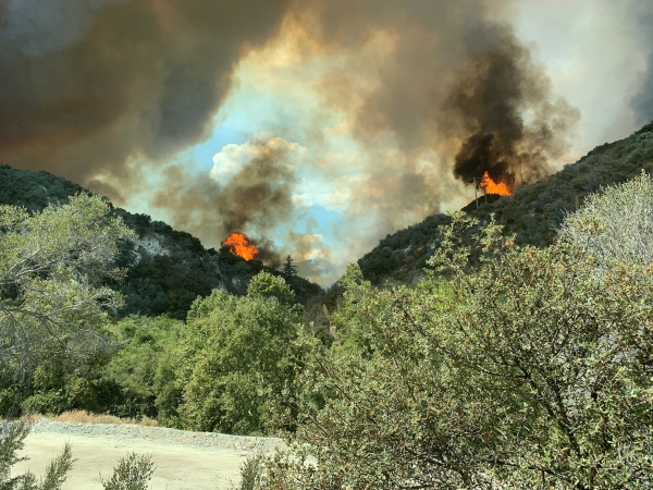 Bobcat Fire Burning In Angeles National Forest: Get The Latest Updates