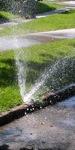 broken sprinkler 1.jpg