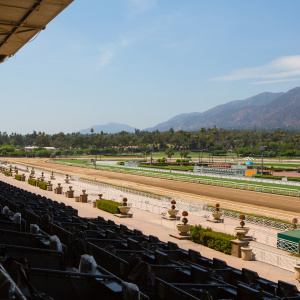 Santa Anita Park Reopens For Training After 21 Horse Deaths In Under 3 Months
