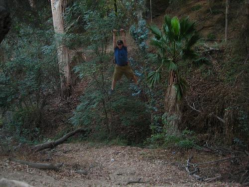 Zach swings