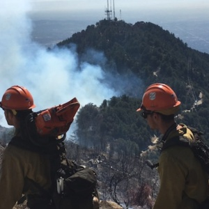 Burned Body Found At Site Of Mt. Wilson Fire