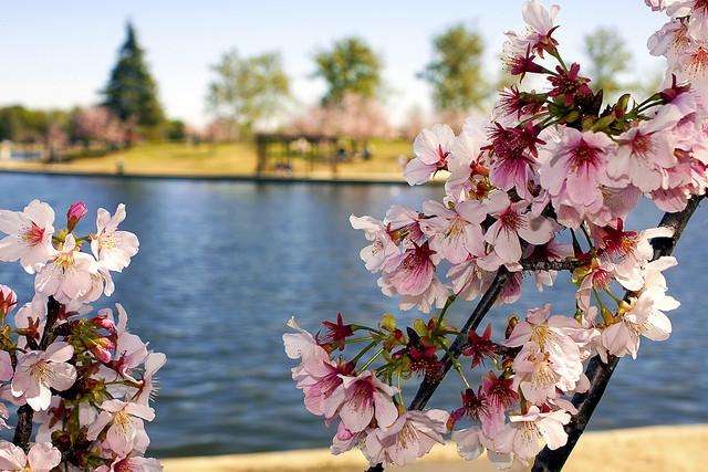 LakeBalboa.jpg