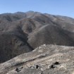 P-22 Is OK, But The Woolsey Fire Has Turned The Santa Monica Mountains Into A 'Moonscape'
