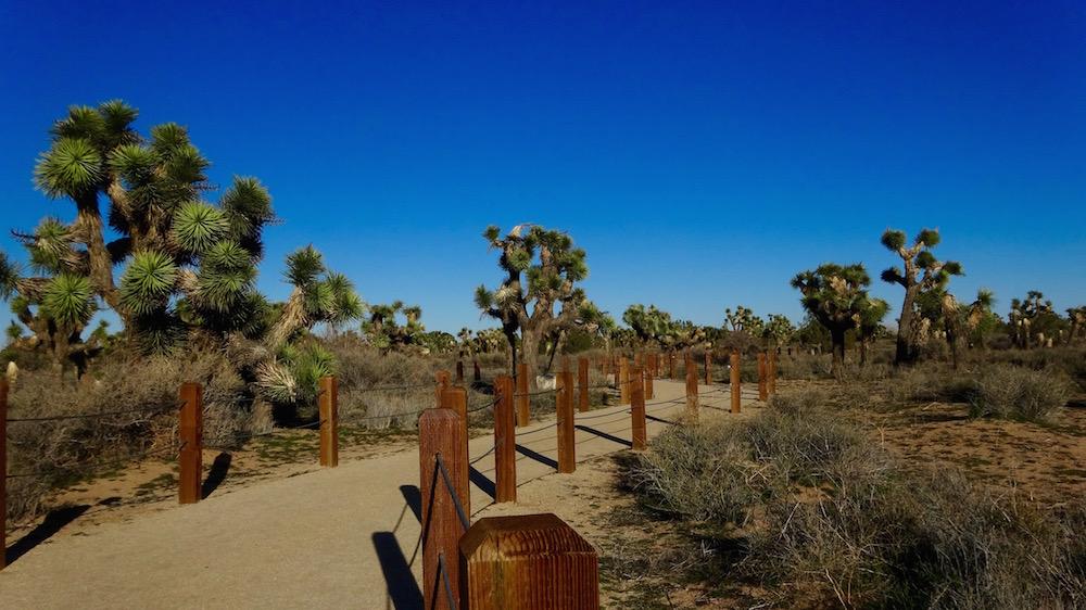 prime-desert-woodland-preserve.jpg