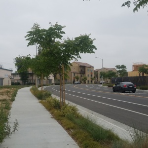 Dear LAist: What's Going On With The Jordan Downs Redevelopment?