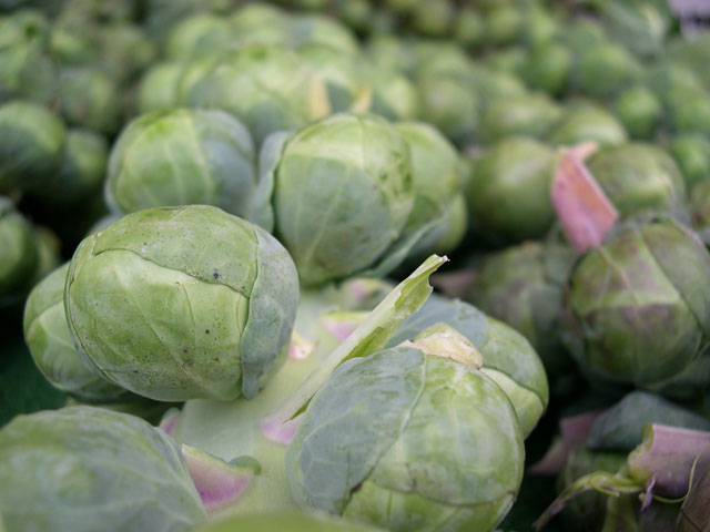 hp_brusselssprouts.jpg