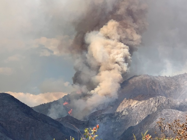 How To Keep Yourself Safe From Wildfire Smoke