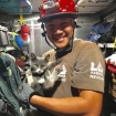 Video: Kitten Stuck In Spinning Wind Turbine Gets Rescued