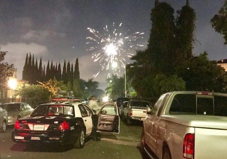 LA Was Lit For July 4th, But In A Super Illegal, Tree-Burning Way
