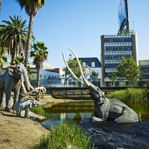 The La Brea Tar Pits Are Being Reimagined -- And You Can Vote On Their Future